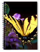 Monarch On Mountain Laurel Spiral Notebook