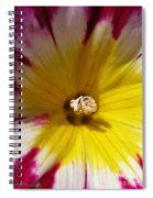 Morning Glory Named Red Ensign Spiral Notebook