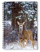 Mule Deer In Snow Spiral Notebook