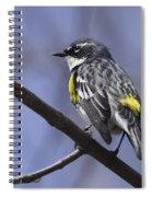 Myrtle Warbler Spiral Notebook
