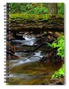 Natural Bridge Spiral Notebook
