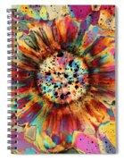 Ocean Jasper Spiral Notebook