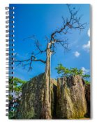 Old And Ancient Dry Tree On Top Of Mountain Spiral Notebook