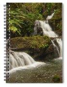 Onomea Falls Spiral Notebook