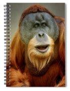 Orang Utan Spiral Notebook