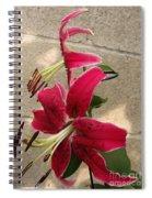 Orienpet Lily Named Scarlet Delight Spiral Notebook