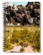 Over-under Split Shot Of Clear Water In Tidal Pool Spiral Notebook
