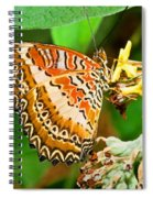Plain Tiger Butterfly Spiral Notebook