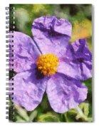 Rockrose Flower Spiral Notebook