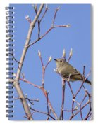 Ruby-crowned Kinglet Spiral Notebook