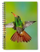 Rufous-tailed Hummingbird Spiral Notebook