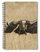 Ruppells Vulture Spiral Notebook