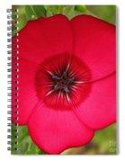 Scarlet Flax Spiral Notebook