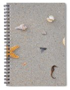 Sea Swag - Natural Spiral Notebook