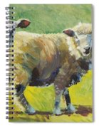 Sheep Painting Spiral Notebook
