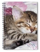 Sleeping Kitten Spiral Notebook