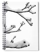 Snow Cover Spiral Notebook
