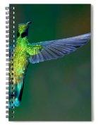 Sparkling Violetear Spiral Notebook