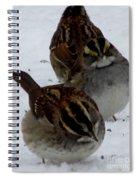 3 Sparrows Spiral Notebook
