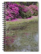 Spring In Mississippi Spiral Notebook