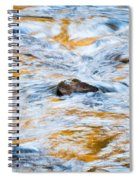 Stream Great Smoky Mountains Painted Spiral Notebook
