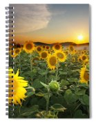 Summer Morning Spiral Notebook