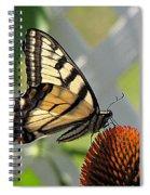Swallowtail On Coneflower Spiral Notebook