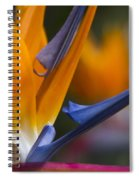 Take Time To Dream Spiral Notebook