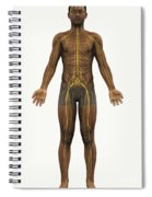 The Nerves Of The Body Spiral Notebook