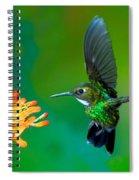 Tourmaline Sunangel Spiral Notebook