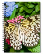 Tree Nymph Butterfly Spiral Notebook