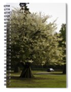 Tree With Large White Flowers Spiral Notebook
