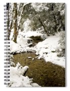 Trees In Snow Spiral Notebook