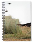 Turkey Vultures Spiral Notebook
