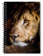 Waiting Spiral Notebook
