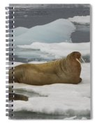Walrus Resting On Ice Floe Spiral Notebook