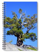 Warrior Against The Elements Spiral Notebook