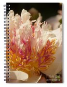 White And Pink Peony 2 Spiral Notebook