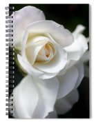 White Rose Petals Spiral Notebook