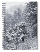 Winter In Pike National Forest Spiral Notebook