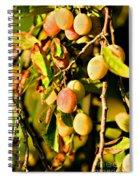 Yellow Plums Spiral Notebook