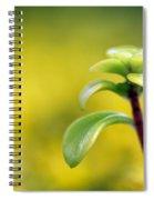 Yellow Sedum Spiral Notebook