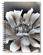 Zinnia From The Whirligig Mix Spiral Notebook