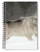 Wolf In Winter Spiral Notebook