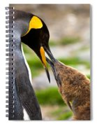 King Penguin Spiral Notebook