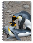 King Penguins Spiral Notebook