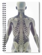 Bones Of The Upper Body Spiral Notebook