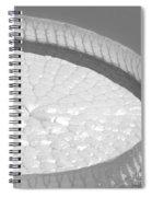 #3a Spiral Notebook