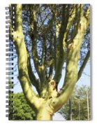 3d Urban Fever Tree Spiral Notebook