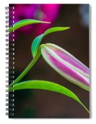 A Touch Of Class Spiral Notebook